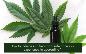 How to indulge in a healthy & safe cannabis experience in quarantine?