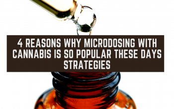4 Reasons Why Microdosing With Cannabis is so Popular These Days